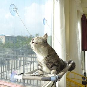 Pefuny Window Cat Hammock