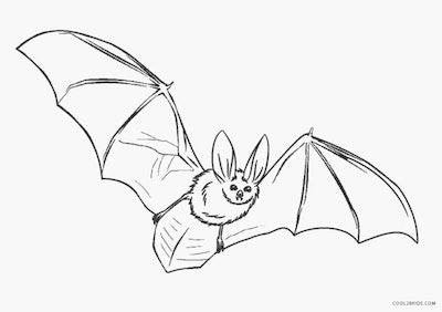 Bat coloring page; realistic-looking bat flying