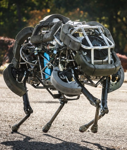 Boston Dynamics' Wild cat robot