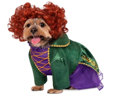 Winifred Sanderson Pet Costume