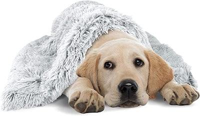 The Dog's Blanket Sound Sleep Original