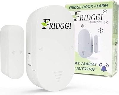 FRIDGGI - Freezer Door Alarm