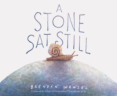 'A Stone Sat Still' by Brendan Wenzel