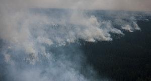 A forest fire in June 2021 in Siberia.