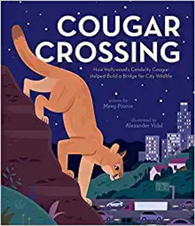 'Cougar Crossing' by Meeg Pincus & Alexander Vidal