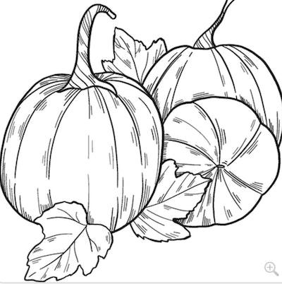 Pumpkin Patch Coloring Page
