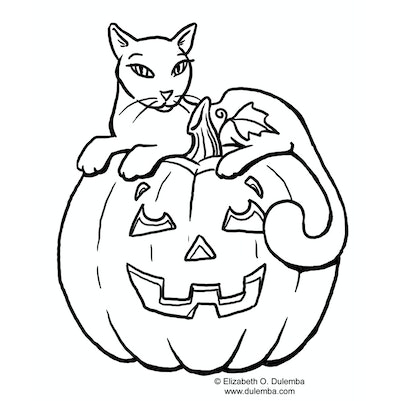 Black Cat And Pumpkin Coloring Page