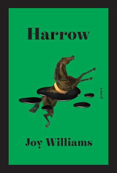 'Harrow' by Joy Williams