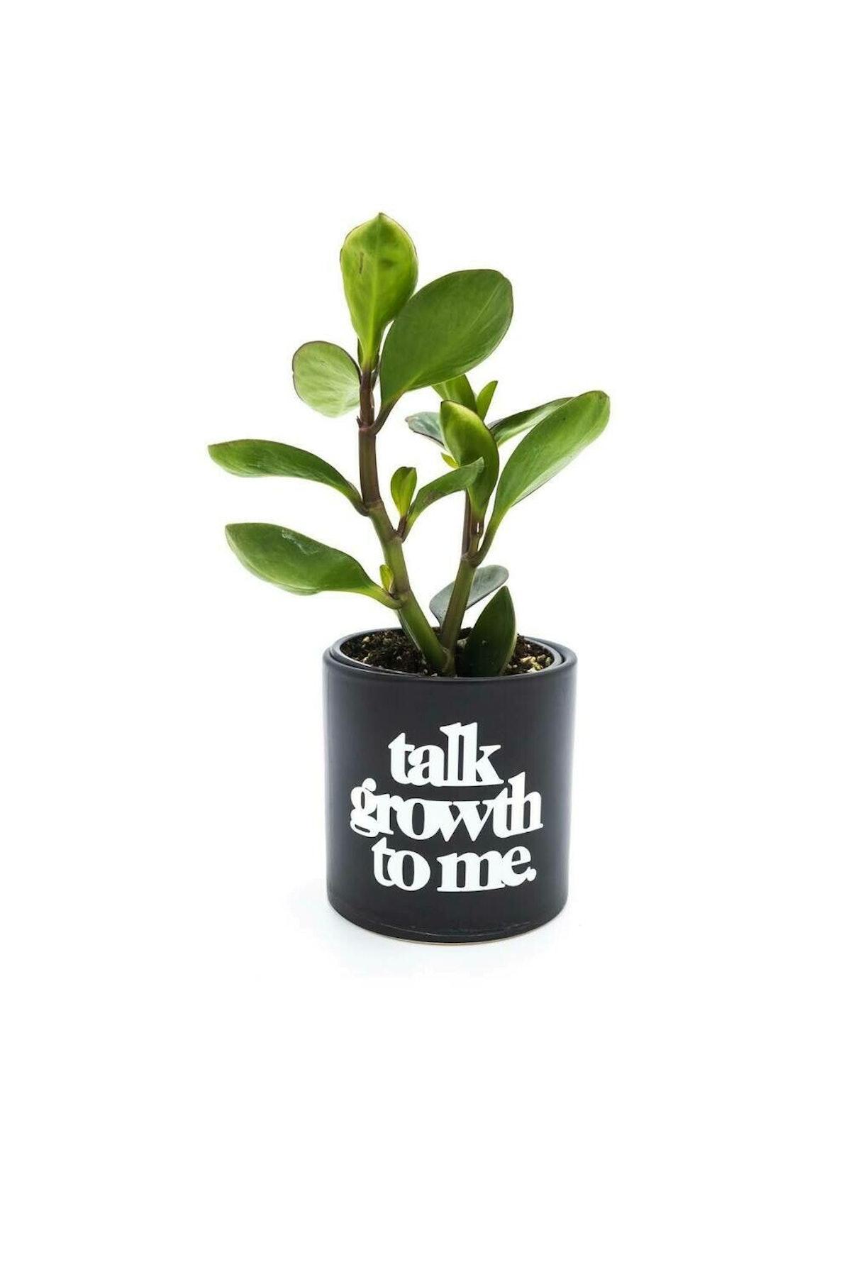Ceramic Talk Growth To Me Planter