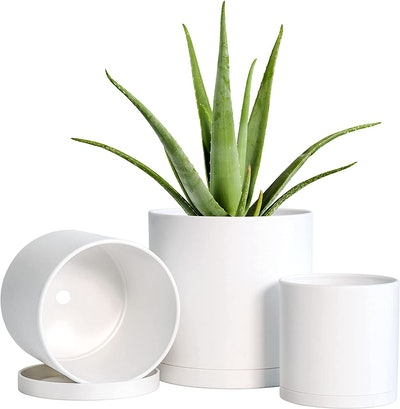 D'vine Dev Planter Pots with Seamless Saucers (Set of 3)