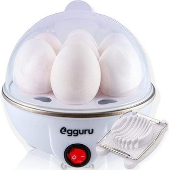 AE Labs Egguru Electric Egg Cooker