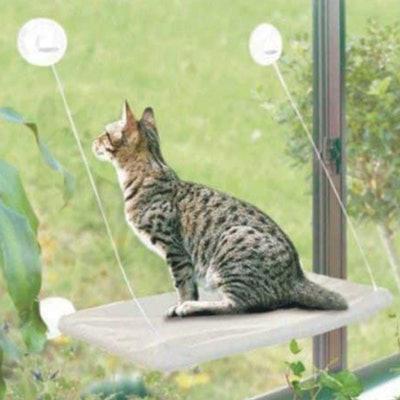 PETPAWJOY Cat Hammock