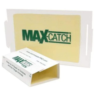 Catchmaster Pest Trap (36 Pack)