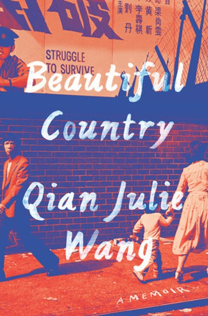 """""""Beautiful Country"""" Book Cover"""