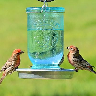Perky-Pet Mason Jar Wild Bird Waterer