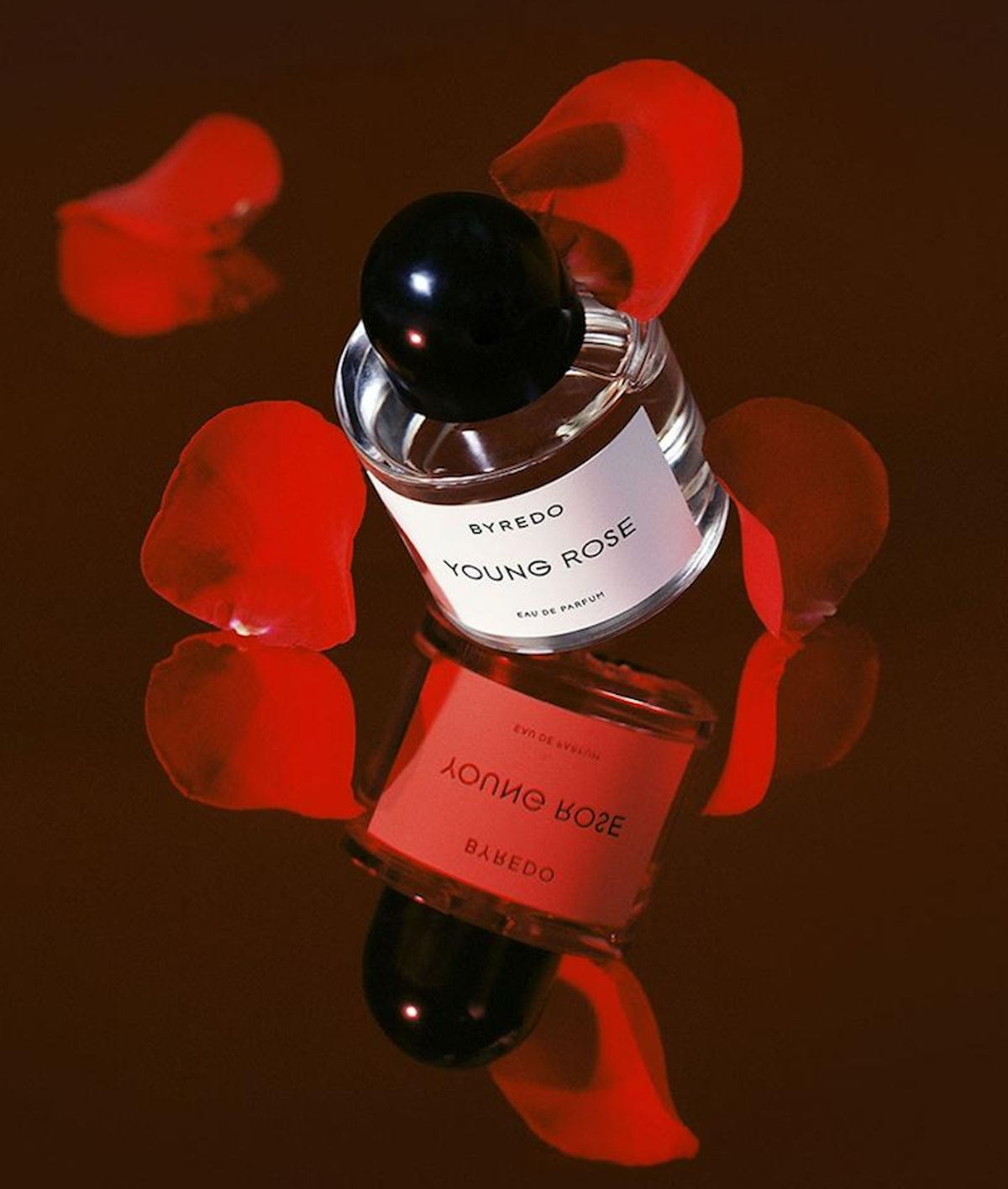 Byredo Young Rose covered in rose petals, shot by Leslie Zhang