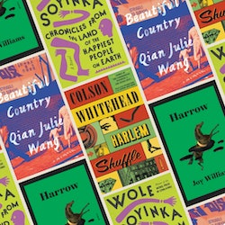 'Harrow,' 'Harlem Shuffle,' 'Beautiful Country,' and 'Chronicles from the Land of the Happiest Peopl...