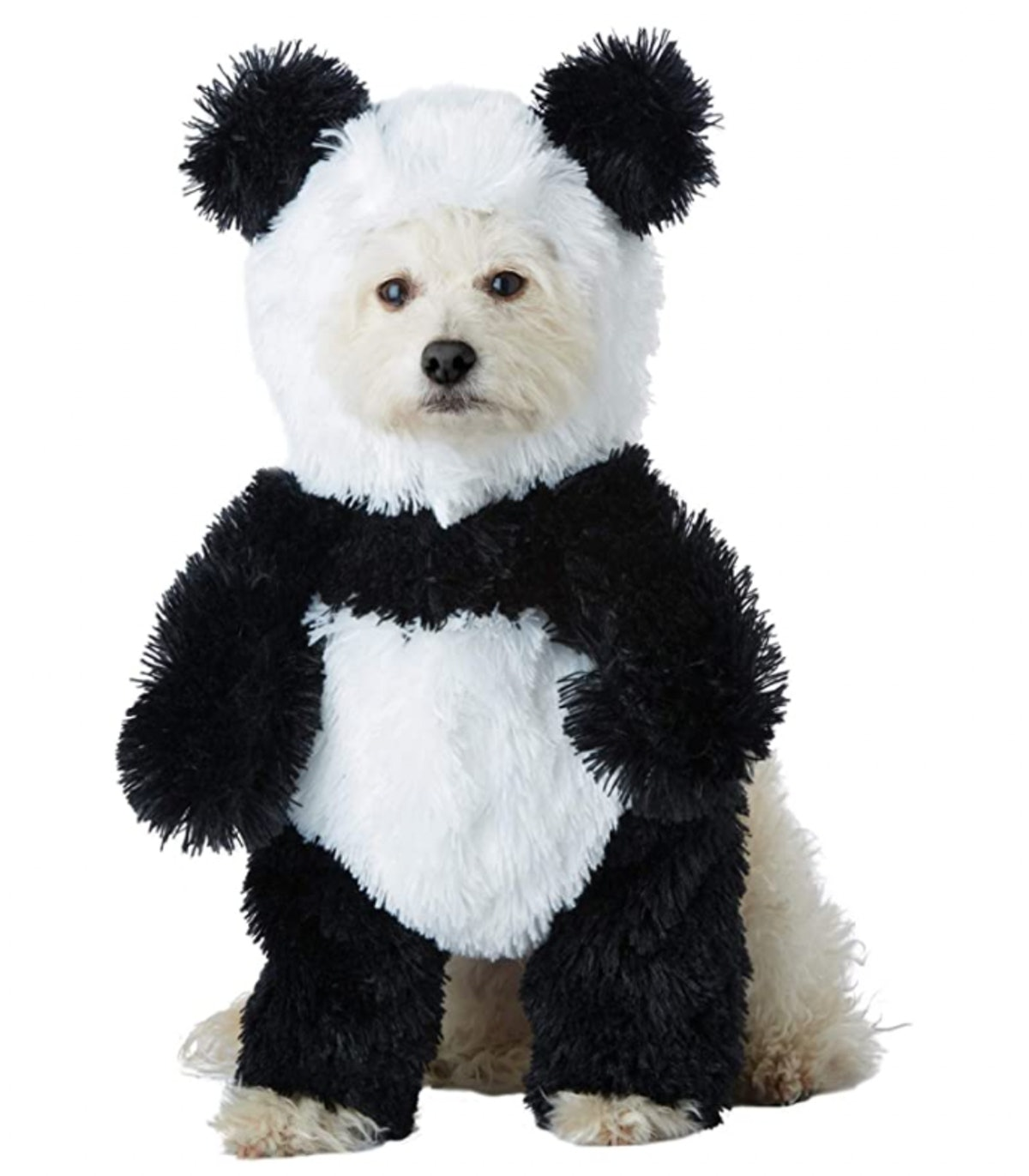This dog Halloween costume will adorably transform your pup.
