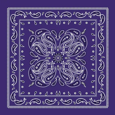 This purple paisley bandana makes a great accessory for a Prison Mike Halloween costume.