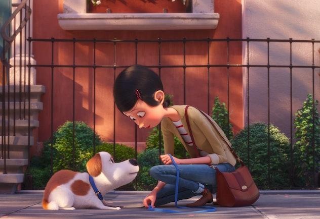 Secret Life of Pets stars Patton Oswalt, Tiffany Haddish, Kevin Hart, and Harrison Ford.