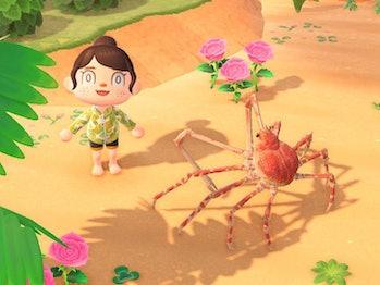animal crossing new horizons spider crab