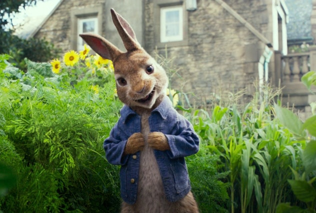 James Cordon provides the voice of Peter Rabbit in this movie.