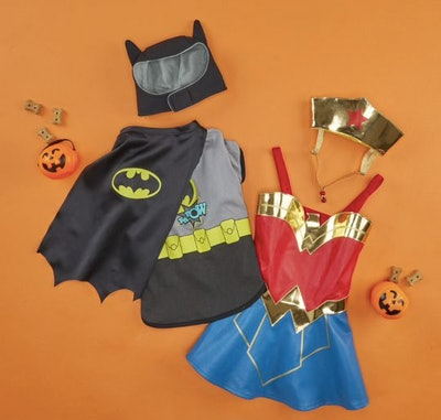 Batman and Wonder Woman pet costumes