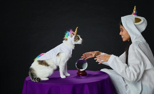 cat and girl in matching unicorn halloween costumes