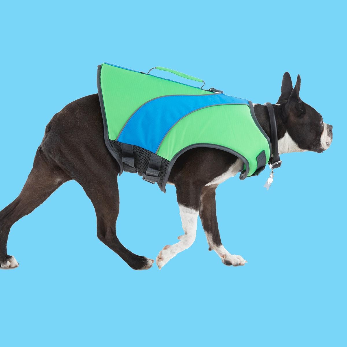The Beach Bum Green & Blue Dog Flotation Vest