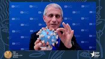 fauci and 3d covid model