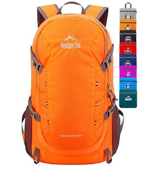 Venture Pal 40L Lightweight Packable Backpack