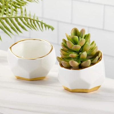 Kate Aspen Geometric Ceramic Planters