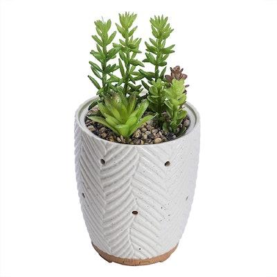Joyvio Artificial Succulent Plants Essential Oil Diffuser