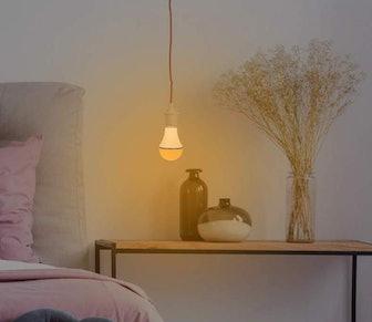 KINUR Amber Light Bulbs