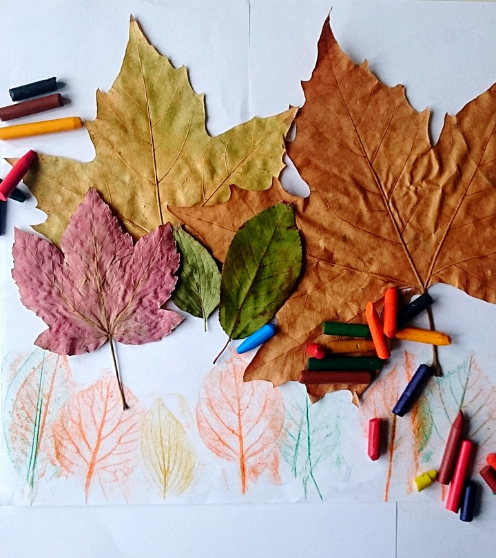 overhead shot of autumn leaf rubbings using crayons and paper