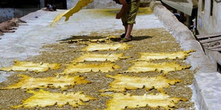 Hides drying in the sun at Chouara Tannery in Fez, Morocco