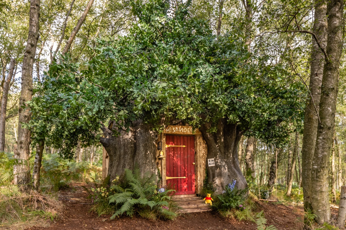 The entrance to Airbnb and Disney's 'Winnie the Pooh' treehouse looks exactly like the books.