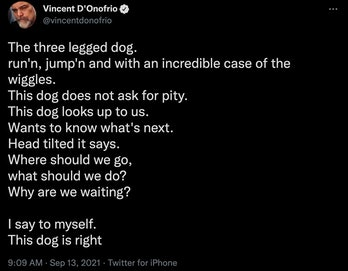 Vincent D'Onofrio Hawkeye trailer tweet echo dog