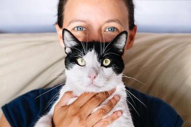 Human holding cat
