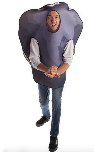 a rock/ boulder Halloween costume