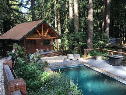 Enjoy California's Redwood Forest at this cabin Airbnb just an hour away from San Francisco.