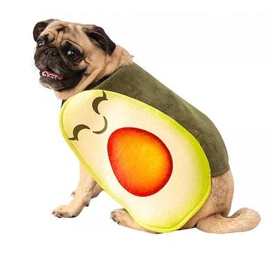 pug dog in an avocado costume