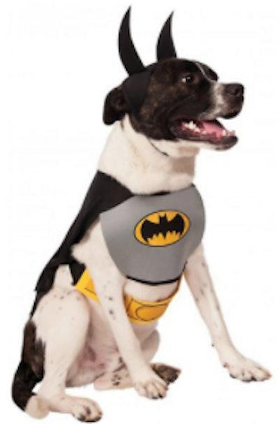 Batman costume for dogs