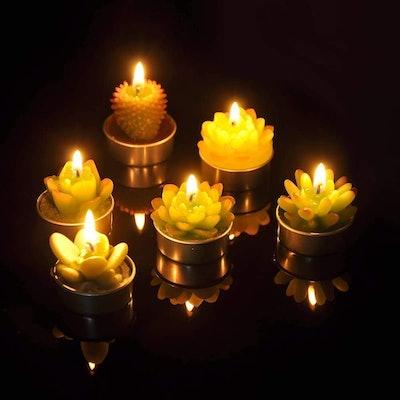 SanSeng Succulent Tealight Candles