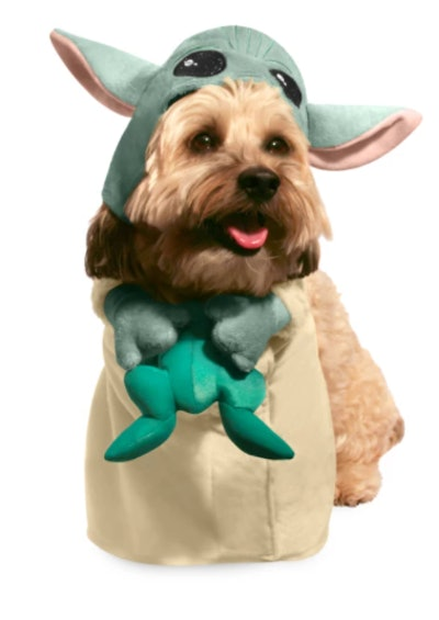 dog costume of The Child from The Mandalorian