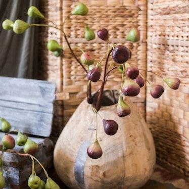 Artificial Fig Fruit Stem