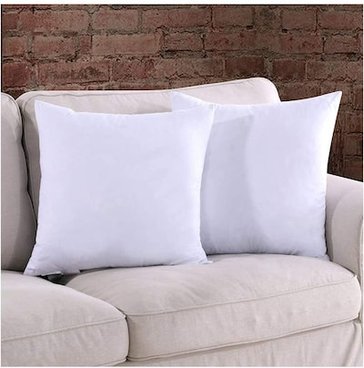 Homelike Moment Throw Pillow Inserts (Set of 2)