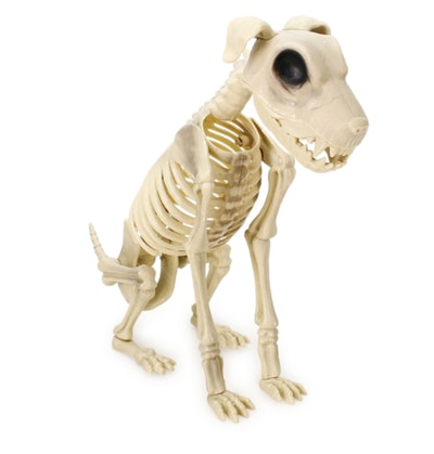 This halloween skeleton dog statue is available at Five Below.