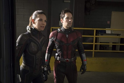 A still from 'Ant-Man and the Wasp,' with Ant-Man and the Wasp in their superhero costumes and stari...
