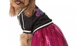 a dog dressed as jojo siwa for halloween